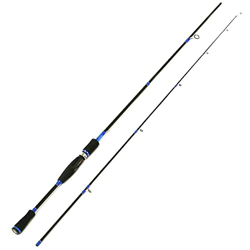 Best Spinning Rod