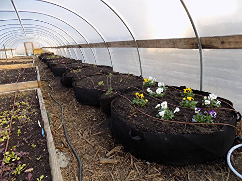 (Bootstrap Farmer 200 Gallon Grow Bag Raised Bed with Handles, 1 Pack)