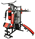 Cockatoo Hg-03 Professional Home Gym Station With Steel Frame Full Cover At Back , Home Gym Machine (Hg-03)