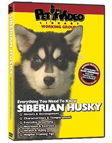 Essential Siberian Husky (SIBERIAN HUSKY DVD! Includes Dog & Puppy Training)