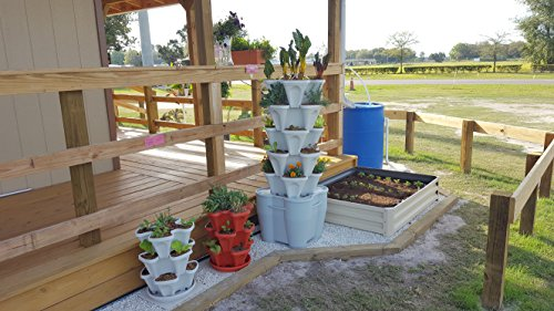 Smart Farm - Automatic Self Watering Garden - Grow Fresh Healthy Food Virtually Anywhere Year Round - Soil or Hydroponic Vertical Tower Gardening System By Mr Stacky (Standard Kit, Stone) by Mr. Stacky (Image #3)