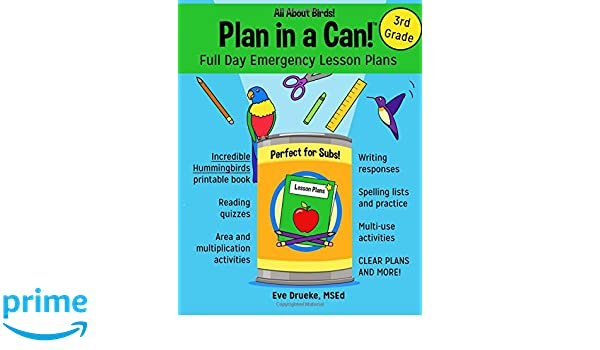 Plan in a Can! Full Day Emergency Lesson Plans for 3rd Grade: All ...