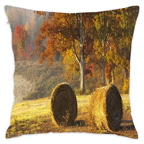 Hwensona Beautiful Hay Bails in Field Throw Pillow Cover Cushion Case Decorative Pillowcase for Couch Chair Living 18 x 18 Inch -