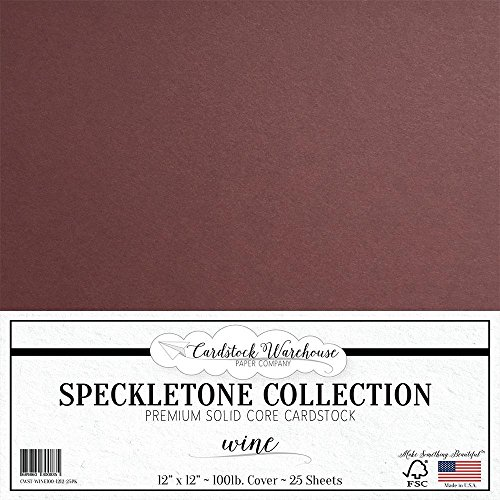 ycled Cardstock Paper - 12 x 12 inch - PREMIUM 100 LB. COVER - 25 Sheets ()