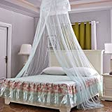 TJW Princess Mosquito Net,Round Dome Bed Fly Insect Protection Net Bedding Decor for Indoor Outdoor Room (Light Green)