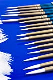 Art Lost Detail Paint Brush Taklon Hair/Hand Made, Set of 16, White