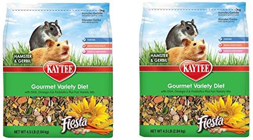Kaytee Fiesta Hamster - 2