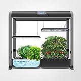 AeroGarden 824500-0208 Salad Bar Seed Pod Kit, 24