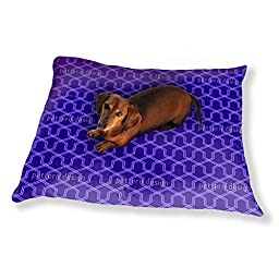 Which Direction Dog Pillow Luxury Dog / Cat Pet Bed
