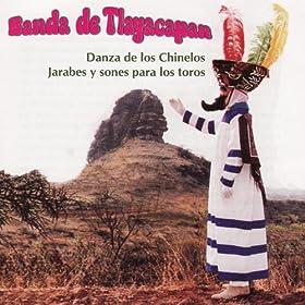 Amazon.com: Danza De Los Chinelos: Banda De Tlayacapan: MP3 Downloads