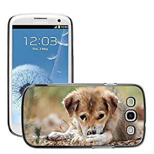 Hot Style Cell Phone PC Hard Case Cover // M00046165 puppy pets animals sad // Samsung Galaxy S3 i9300