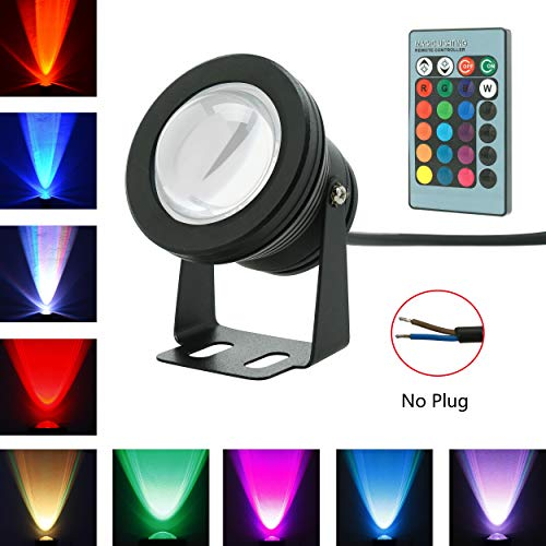 RUICAIKUN 10W Waterproof Outdoor RGB Light LED Flood Light with Remote Control, DC/AC 12V, WITHOUT PLUG]()