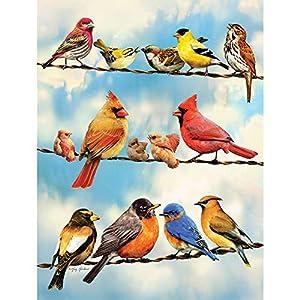Cobblehill 85034 500 Pc Uccelli Su Un Filo Di Puzzle Vari