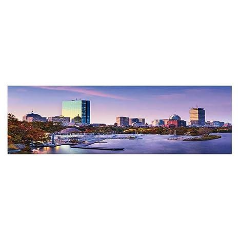 Amazon com : Dragonhome Background Fish Tank Sticker Boston