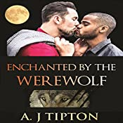 Enchanted by the Werewolf: Werewolves of Singer Valley, Book 2 | AJ Tipton