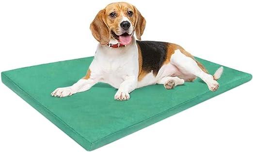 ADOV Cama Perro Lavable Medianos, 84 x 54cm Impermeable Doble Cara Dog Bed, Duradera, 6000D Oxford Ortopédica Gruesa Espuma Cama Mascota, Colchón Perros S/M/XS, Gatos - Mediano: Amazon.es: Productos para mascotas