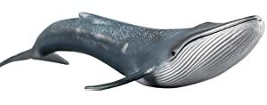 Funnuf Marine Life Hand-Painted Toy Figurine Model Shark Whales Figurine Collection Realistic Blue Whale Replica, Ideal for Collectors, Ages 3 and Up