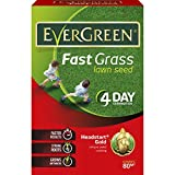 EverGreen 118016 Lawn Seed, Brown, 2.4 kg