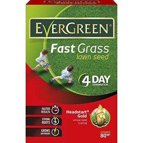 EverGreen Fast Grass Lawn Seed 2.4kg
