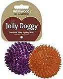 Rosewood Jolly Doggy Balle en Caoutchouc à Pics pour Attraper/Jouer Jouet pour Chien 8 cm