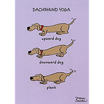 Dachshund Yoga Recycled Paper Greetings Funny Humorous Birthday Card