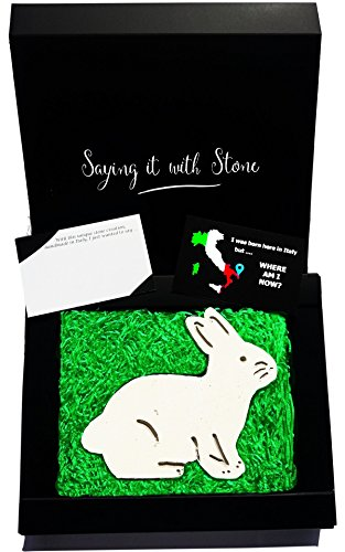 Handmade in Italy Bunny Rabbit - Elegant gift box and blank message card included – Ancient rare Italian stone containing fossil fragments - Original gift for animal lovers – Mom dad grandma grandpa