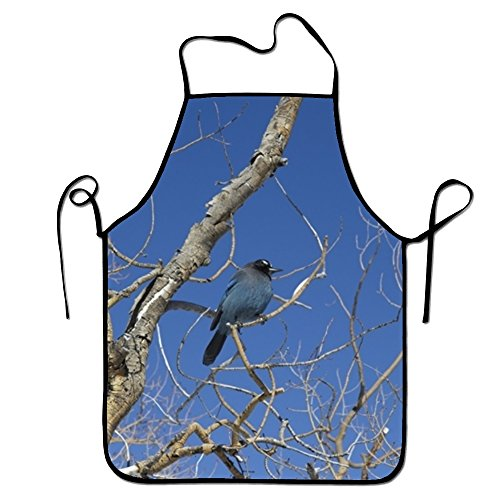 Kerr Juliet Bird Colorado Jay Stellers Sweetheart Chef Kitchen Apron Waiteress Stitched (Halloween Party Colorado Springs Co)