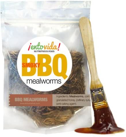 Edible Insects | BBQ Mealworms