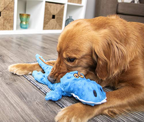 Buy dog toys for large dogs