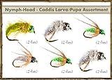 Fly Fishing Flies - NYMPH-HEAD Assortment - CADDIS LARVA/PUPA (12 flies)