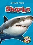 Sharks, Colleen Sexton, 1600143741