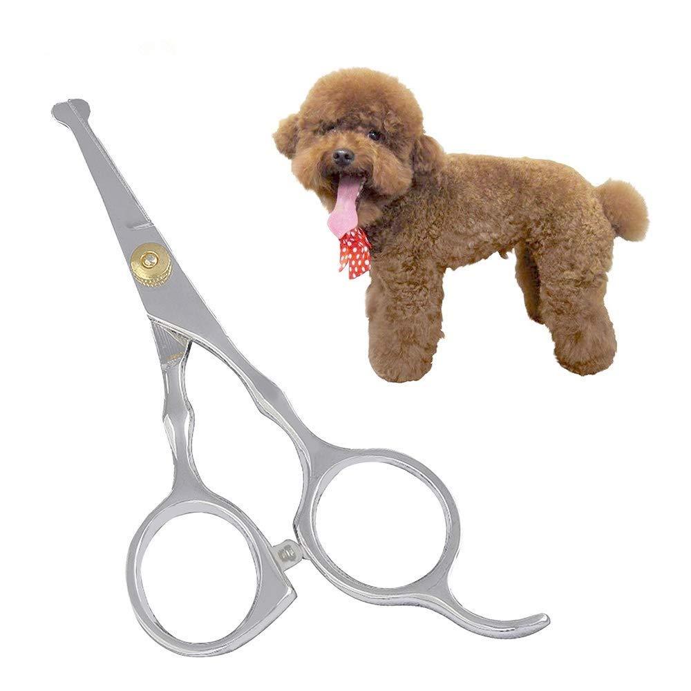 Herramientas de Corte Tesoura AILOVA Tijeras de Pelo para Perros y Mascotas Tijeras de peluquer/ía de Borde Afilado Puntas Redondeadas de Seguridad