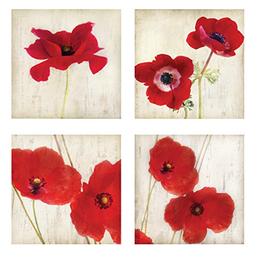 Beautiful Bright Red California Poppies; Floral Decor; 4-12x