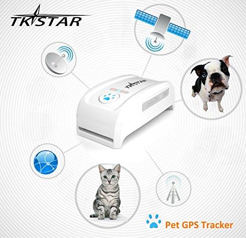 billetera Hangang Localizador de GPS Collar anti-p/érdida de localizador // perseguidor ni/ños tel/éfono celular posici/ón de alarma TK909 animales control remoto anti-perdida para mascotas