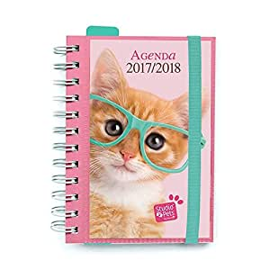Agenda Escolar 2017/2018 Studio Pets Cat (en Portugues ...