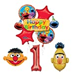 Mayflower Products Sesame Street Bert and Ernie 1st Birthday Party Supplies and Balloon Bouquet Decorations