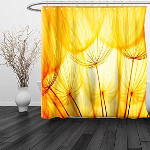 HAIXIA Shower Curtain Yellow Joy of Dandelion Flower Garden Seeds in Hot Summer Time Themed Artwork Merigold and - Johnson Dwayne Sunglasses