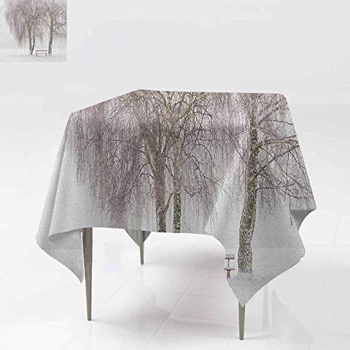 - AndyTours Spill-Proof Table Cover,Winter,Bench in The Park on a Snowy Cold Winter Day in Storm Wind Blizzard Holiday Picture,Table Cover for Kitchen Dinning Tabletop Decoratio,50x50 Inch White Brown