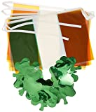 Flags  and  Shamrocks Banner Party Acces