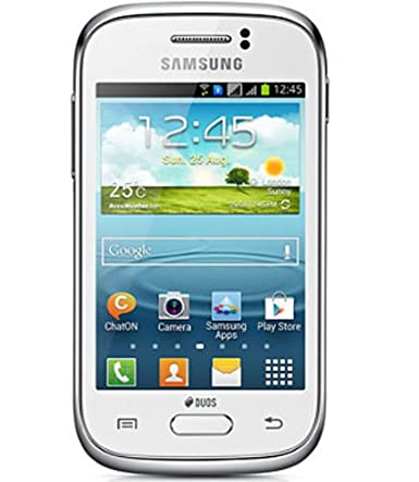 Samsung Galaxy Young GT-S6312 (White)
