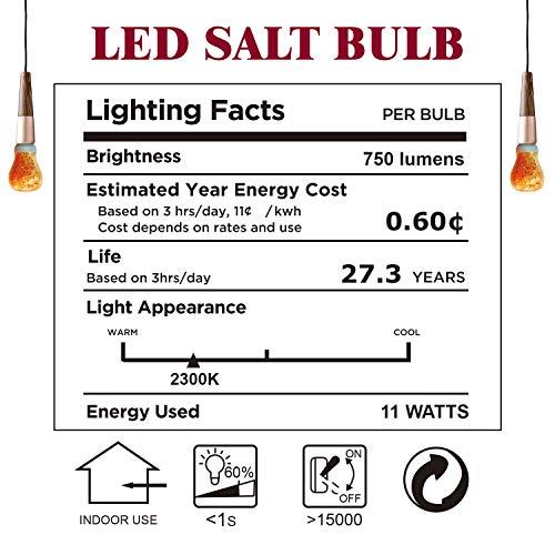 Himalayan Glow 60-Watt Salt Light Bulb, 2 Pack, 2 Count