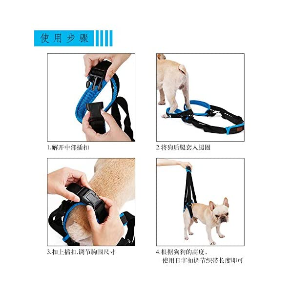 RC GearPro Dog Lift Harness for Back Legs, Pet Support Sling Help Weak Legs Stand Up Injured Disabled Arthritis ACL… Click on image for further info. 5