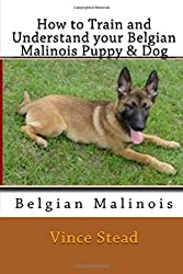 How to Train and Understand Your Belgian Malinois Puppy & Dog