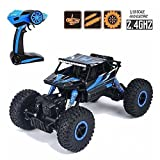 Higadgettm Dirt Drift Waterproof Remote Controlled Rock Crawler Rc Monster Truck, Four Wheel Drive, 1:18 Scale 2.4 Ghz - Random Color