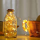 AtneP 100 LED USB Powered Copper Wire Fairy Lights for Home and Festival Decoration (Warm White, 10 m)