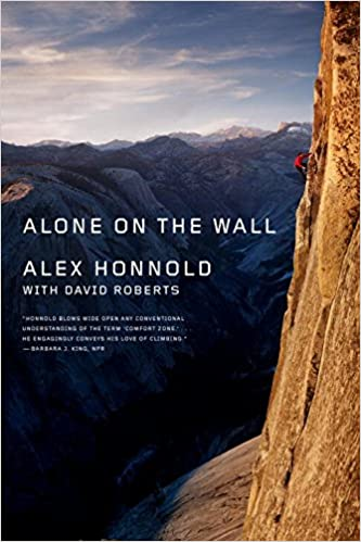 Image result for alone on the wall alex honnold