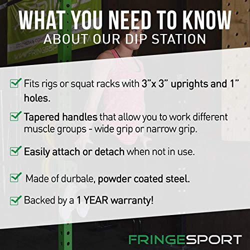 Fringe Sport Dip Station - Attachment for 3''x3'' Rigs and Squat Racks with 1'' Hardware/Angular Bar Layout … by Fringe Sport (Image #1)