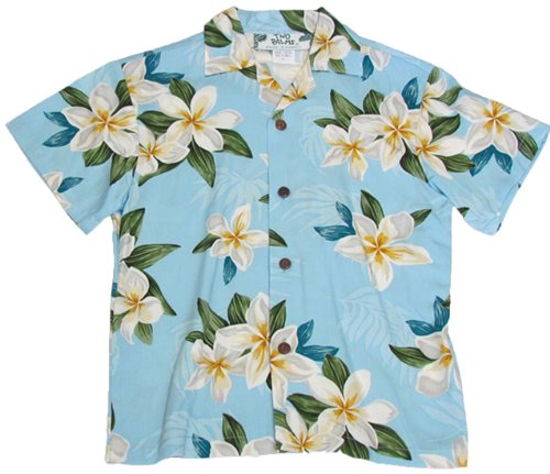 Two Palms Boys Plumeria Shower Rayon Shirt Blue 4 by Two Palms
