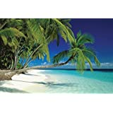 Thonig Maldive Morning Palm Tree Tropical Beach Scenic Poster 24 x 36 inches