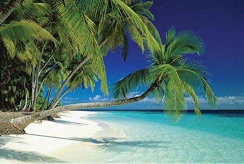 Pyramid Maldives Beach Poster Print